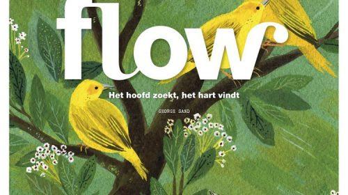 flow_magazine_dsl